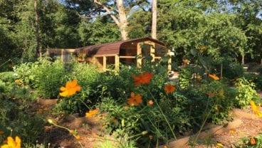 Medinah Country Club organic garden