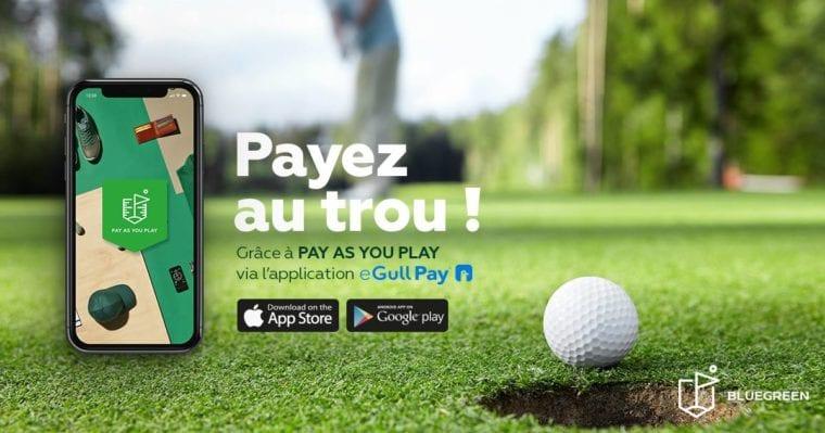 Bluegreen eGull Pay customer experience