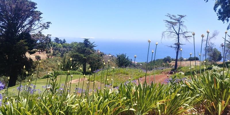 Palheiro Golf Club flowers Portuguese golf courses eco-friendly