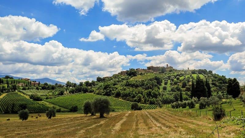 Italian wines chianti-landscape