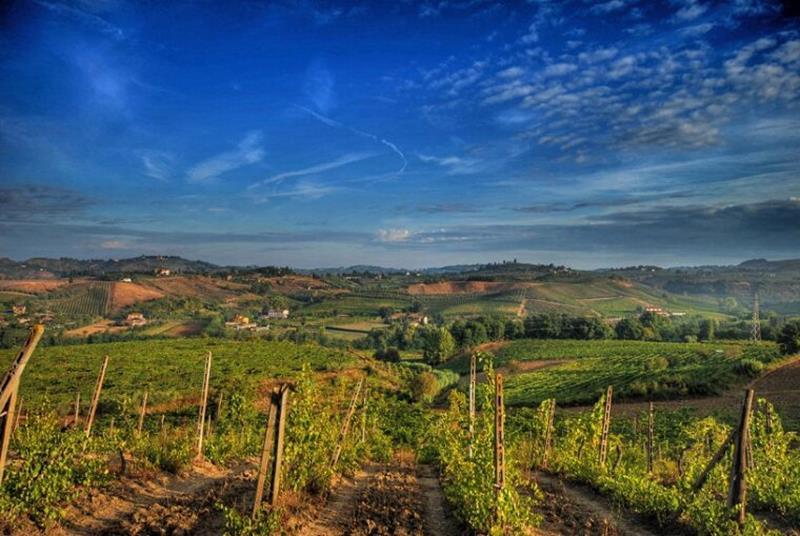 Italian wines chianti landscape