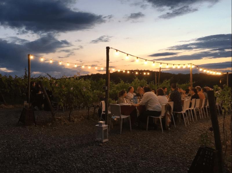 Italian wines dinner in wineyard in chianti
