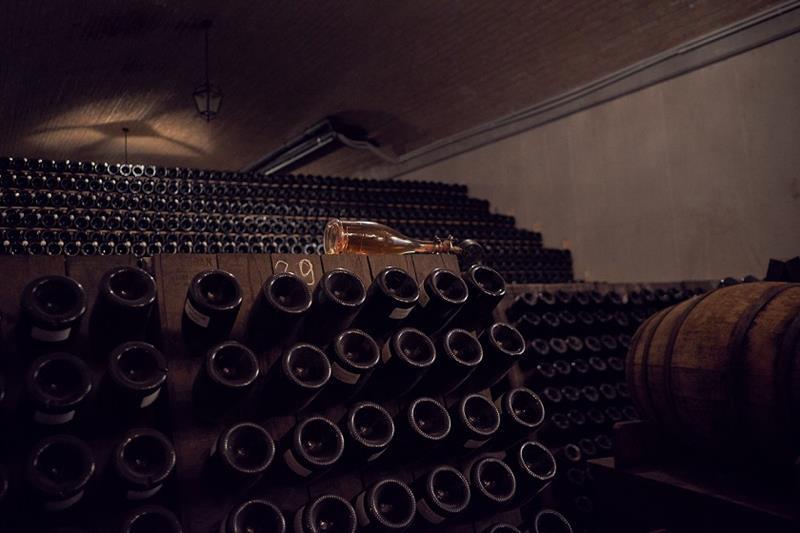 Italian wines in villa baiana - la montina - franciacorta winery-2