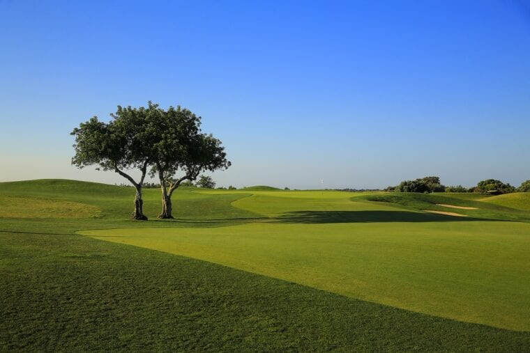 The Dom Pedro Victoria Course is in perfect condition ahead of the Portugal Masters eco-friendly