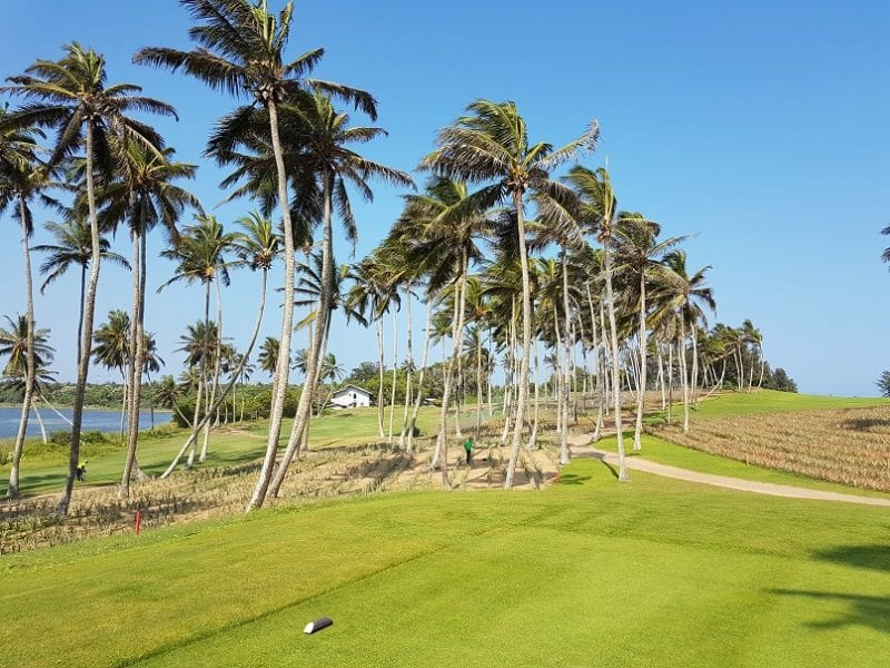 Hambantota palm trees edible golf courses