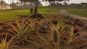 Hambantoto, Sri Lanka edible golf courses