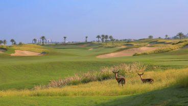 Saadiyat Beach Golf Club Abu Dhabi golf venues