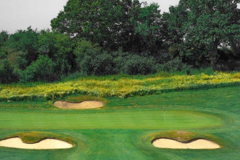 Farleigh Golf Club Operation Pollinator program 2021 Syngenta golf course