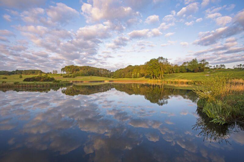 London Golf Club golf course lake